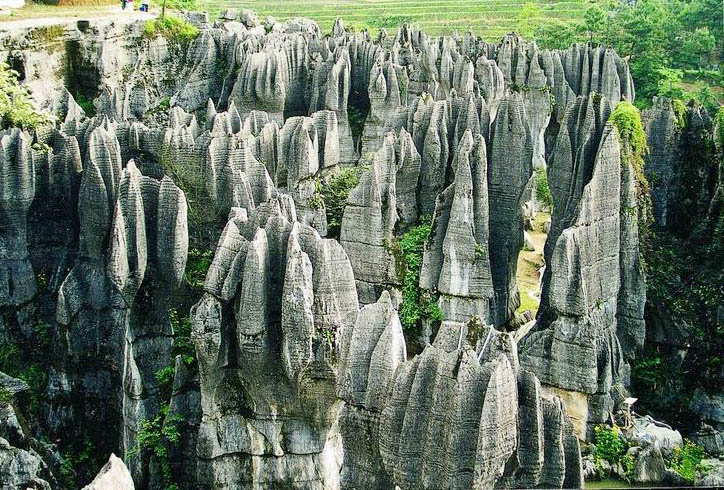 photo of Wansheng Stone Forest